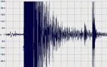Terremoto Giappone 30 Maggio 2015: forte scossa di magnitudo 7.8 Richter, allarme tsunami subito rientrato
