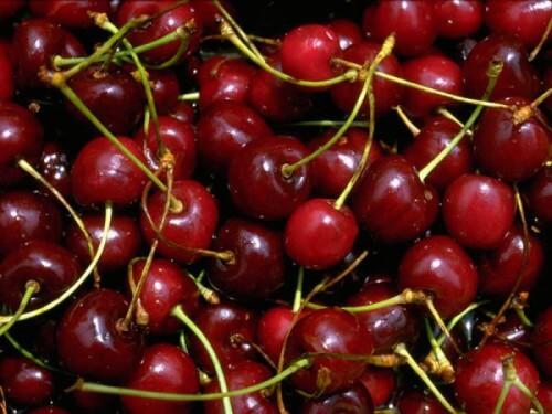 Le ciliegie aiutano a combattere l'insonnia