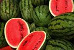 Mangiare il cocomero d'Estate fa abbassare l'ipertensione