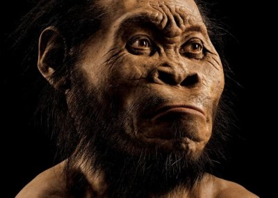 Nuova specie umana scoperta in Sudafrica, l'Homo Naledi