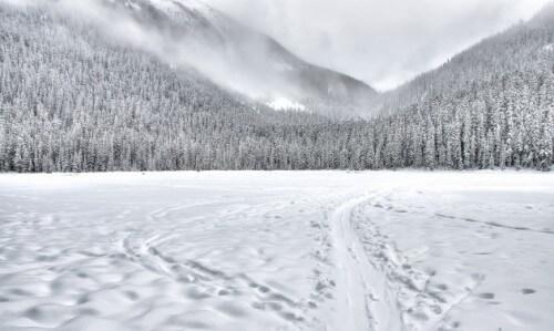 Ecco perché la neve attutisce i suoni