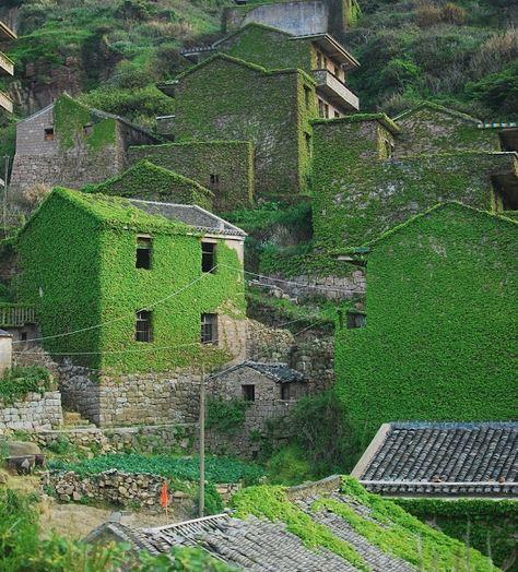 Villaggio abbandonato ricoperto dalla vegetazione, è attrazione turistica