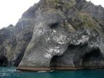 Elephant rock: la roccia a forma di elefante nell'isola di Heimaey