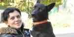 Shavi, cagnolina randagia percorre 300 km per tornare a casa