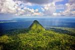 Amazzonia: nasce la Sierra del Divisor, uno dei parchi più grandi al mondo