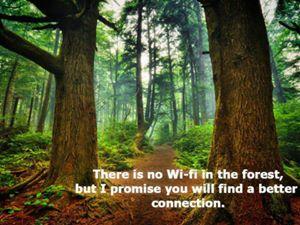 Vivere nei boschi nel 2015 è possibile?