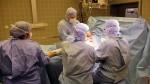 Roma: asportato tumore di 30 kg al Regina Elena