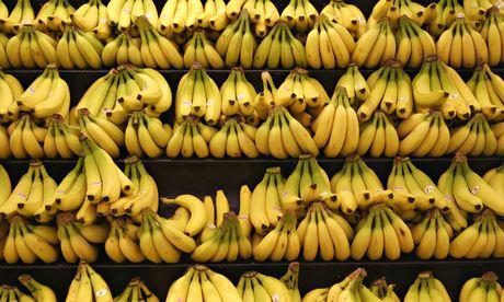 Banane, come la peste potrebbe cancellarle per sempre