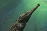 Tunisia: l'enorme coccodrillo preistorico scoperto nel deserto