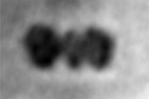 Proteine: realizzata la prima foto grazie al grafene