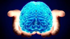Così distruggiamo ogni giorno il nostro cervello