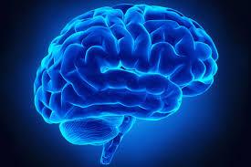 Possibile correlazione tra infezioni e invecchiamento del cervello