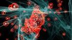 Scienza, scoperta una nuova varietà di tetraquark