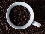 Salute, bere caffè ogni giorno riduce l'insorgere della sclerosi multipla