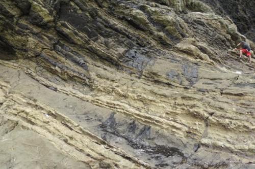 Colombia, ritrovati frammenti del meteorite che estinse i dinosauri