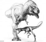 Dinosauri: scoperto il fratello più piccolo ed intelligente del T.Rex