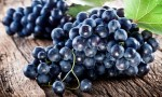 L'uva fa bene agli occhi: il risultato delle ricerche