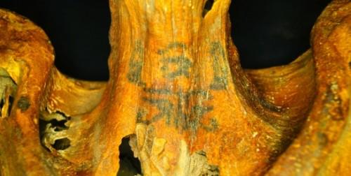 Tatuaggi di tremila anni fa, la scoperta su una mummia dell'Antico Egitto