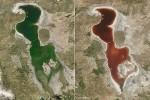 Iran: il lago Urmia si colora di rosso sangue, immagini shock