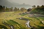 Malattia misteriosa uccide 30 persone: allarme in Birmania