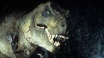 Teschio di Tirannosauro riemerge in Montana: l'incredibile scoperta