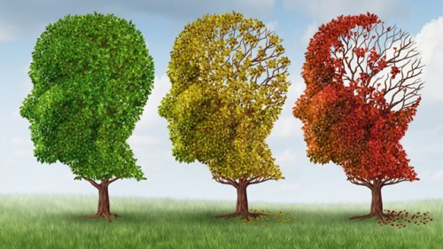 Alzheimer: boom di casi, i quattro sintomi da non sottovalutare