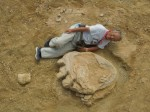 Impronta da record scoperta nel Deserto del Gobi: è di un titanosauro