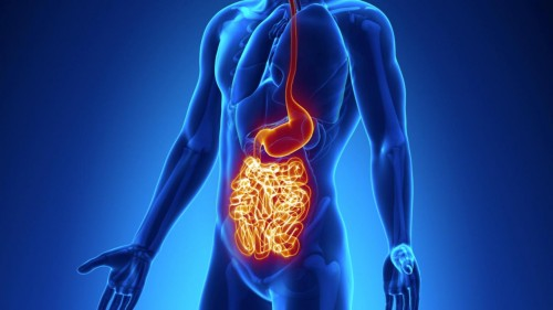 Malattia di Crohn: i sintomi di una patologia sempre più diffusa