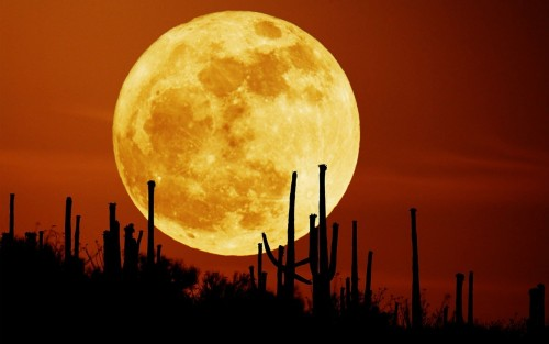 Superluna, si avvicina lo spettacolo: a che ora si vedrà?
