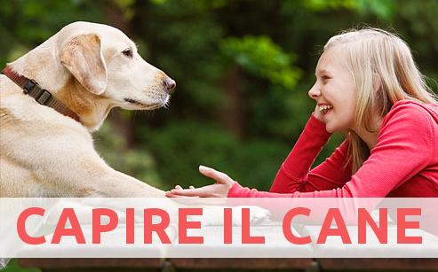 Come possiamo capire quello che i cani ci vogliono dire?