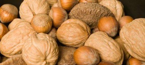 Noci e nocciole: ecco le malattie che è possibile evitare con la frutta secca