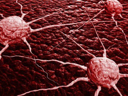 Tumori e casualità: scoperto un importante legame