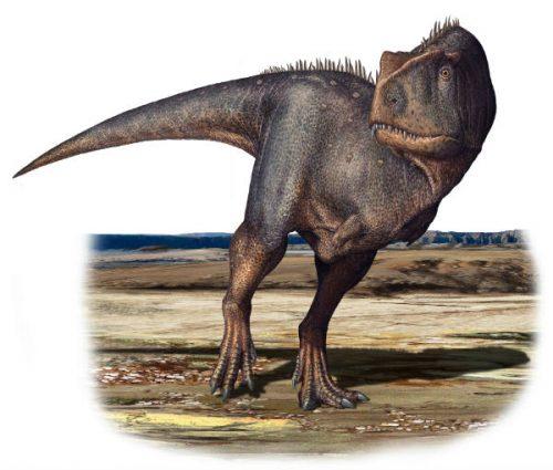 Abruzzo: scoperta enorme impronta di dinosauro