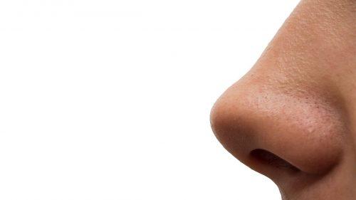 Forma del naso: ecco cosa la determina secondo gli scienziati