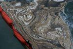Inquinamento: la spugna riutilizzabile che assorbe il petrolio