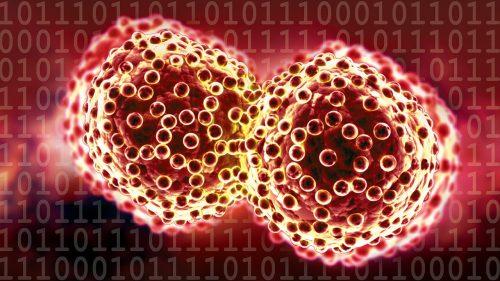 Tumore ai testicoli: è boom di casi, ecco i sintomi