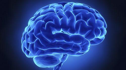 """Intelligenza: ecco 10 """"sintomi"""" di un QI superiore alla media"""