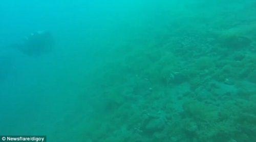 Filippine: terremoto sorprende sub in immersione, il video