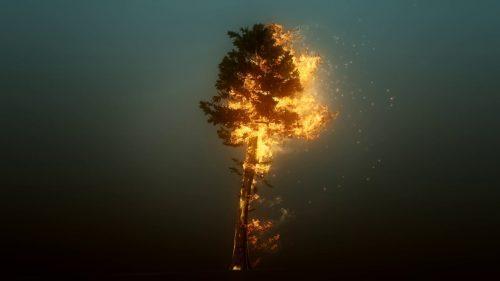 Ambiente: gli incendi inquinano molto più del previsto