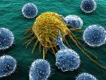Tumori: scoperto l'interruttore che blocca lo sviluppo del cancro