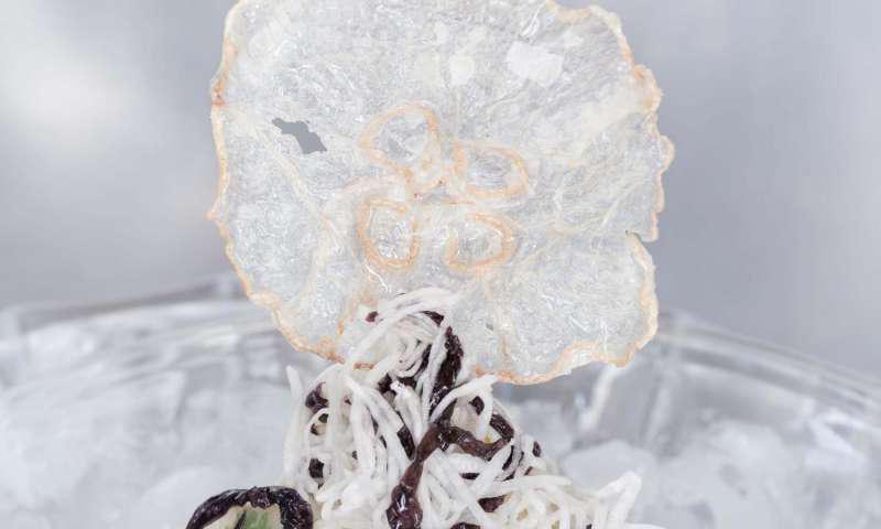 Chips di meduse: l'aperitivo del futuro dall'Oriente