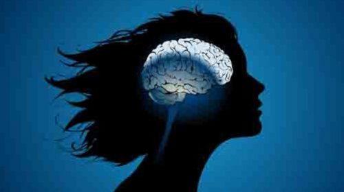 Il cervello delle donne è 'più attivo' rispetto a quello degli uomini