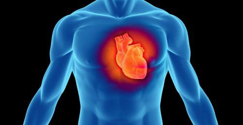 Salute: i nemici del cuore sono i carboidrati, non i grassi