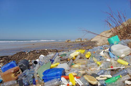 Degradare la plastica in 15 giorni: scoperto l'enzima miracoloso