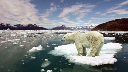 Riscaldamento globale: il processo è irreversibile