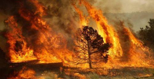 Ophelia alimenta gli incendi, 27 morti in Portogallo. Paura in Irlanda