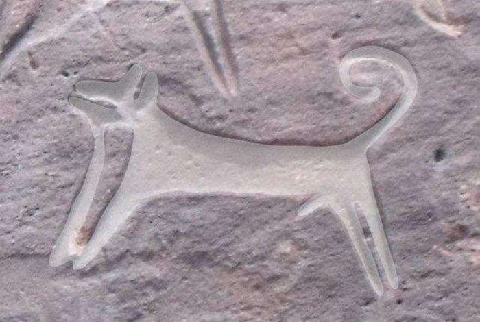 La prima raffigurazione di un cane scoperta in Arabia: ha ottomila anni