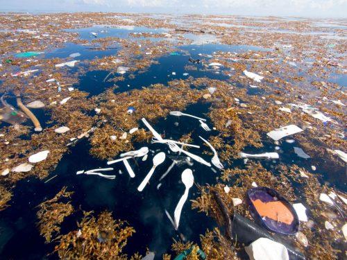 I Caraibi non sono più un paradiso: rilevata quantità record di plastica