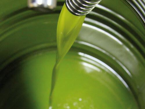 L'olio extravergine di oliva può prevenire il cancro al colon