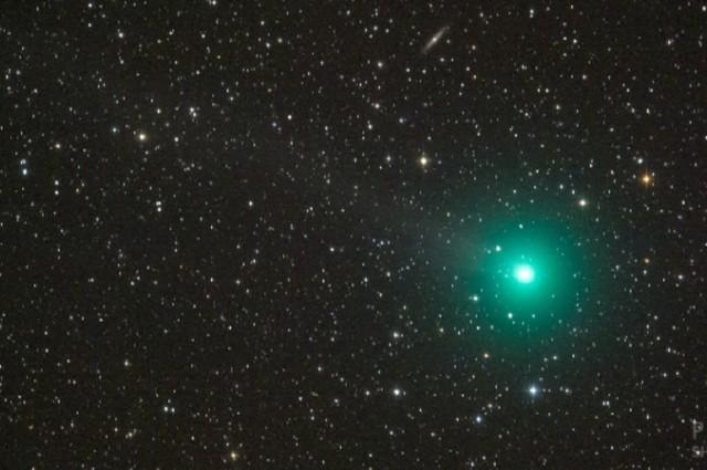 Una cometa di Natale per le festività: Lovejoy C/2014 Q2
